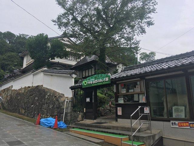 20190901tsuyama-chuka-ningyo067.jpg