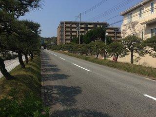 20200408suma012.jpg