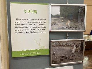20200611shizenshi025.jpg