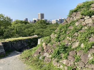 20200626fukuoka046.jpg