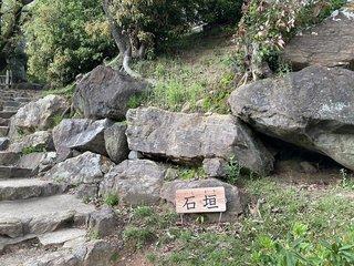 20210408nagoyakomaki642.jpg