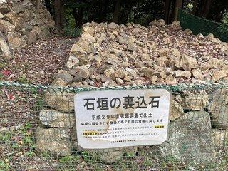 20210408nagoyakomaki645.jpg