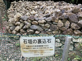 20210408nagoyakomaki647.jpg