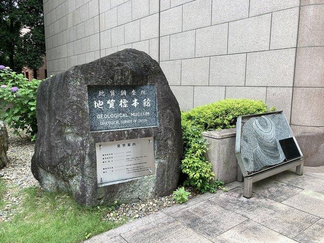 20210626tsukuba141.jpg