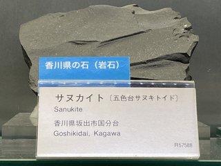 20210626tsukuba166.jpg