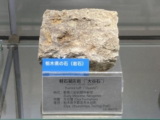 20210626tsukuba167.jpg