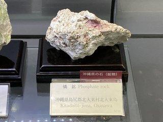 20210626tsukuba172.jpg